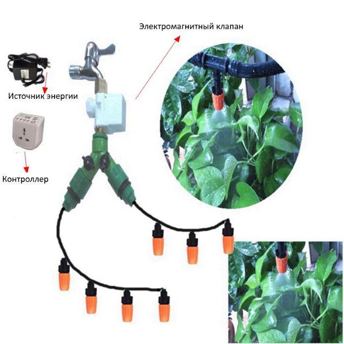 устройства капельного полива автоматика